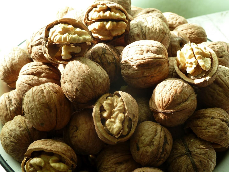 Кореновский орех фото