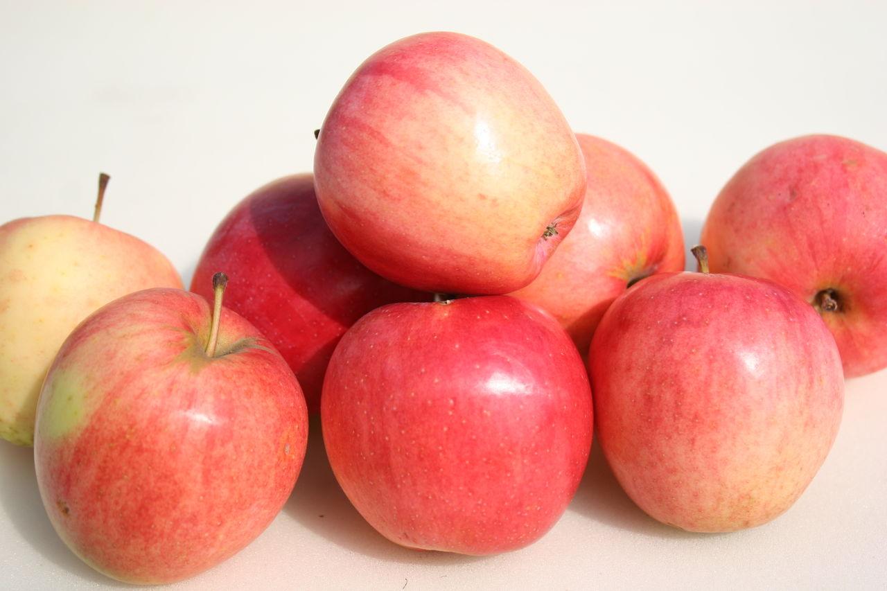 сорта сладких яблок фото с названием